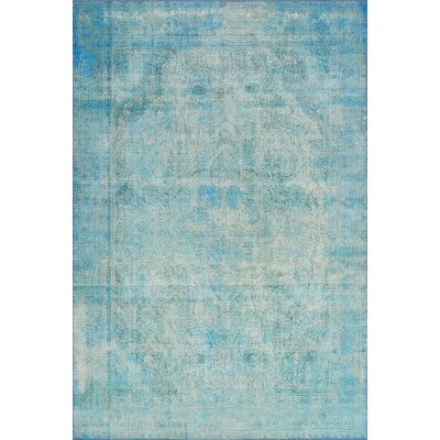 Rakesh Aqua Area Rug� Rug Size: Rectangle 76 x 96