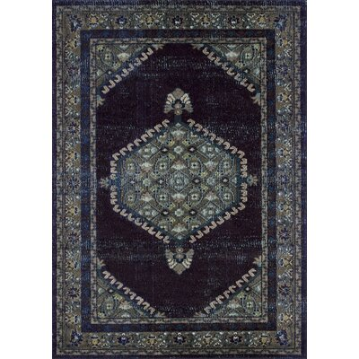 Feldmann Persian Inspired Espresso/Blue Area Rug Rug Size: Rectangle 5 x 7