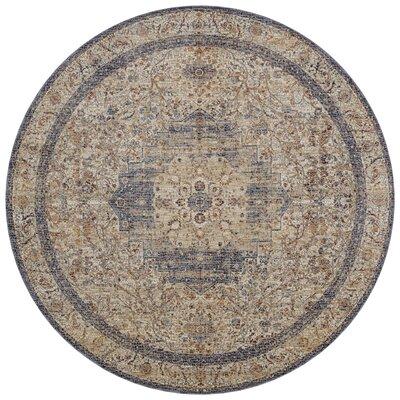 Dietrick Ivory/Beige Area Rug Rug Size: Round 710
