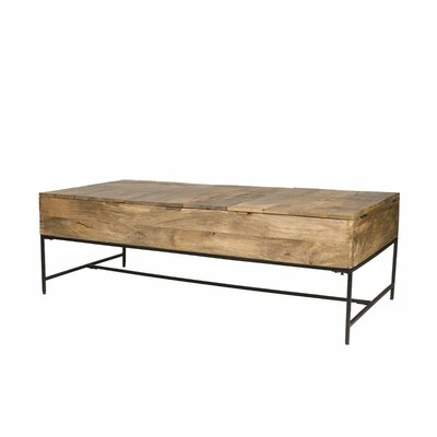 Cohen Trunk Coffee Table with Storage