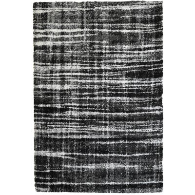 Menzies Stripes Black Area Rug Rug Size: 53 x 76