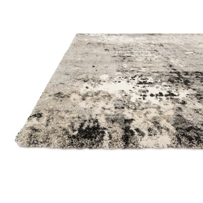Parinaaz Grey Rug Rug Size: Rectangle 77 x 106