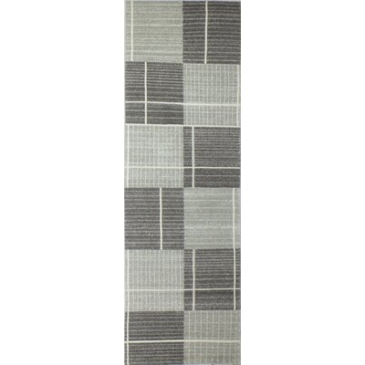 Wilbraham Silver Area Rug Rug Size: Runner 26 x 8