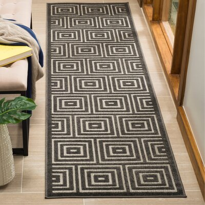 Candor Black Indoor/Outdoor Area Rug Rug Size: Runner 23 x 8