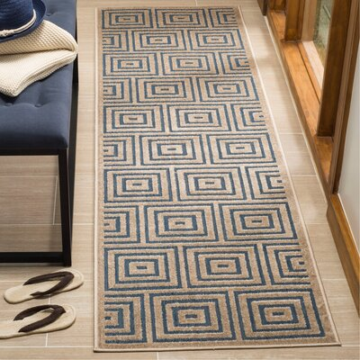 Candor Blue Outdoor Area Rug Rug Size: Runner 23 x 8