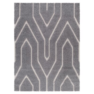Gray/White Area Rug