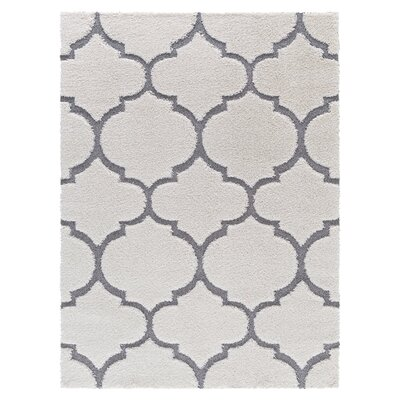 White/Gray Area Rug