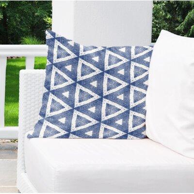 Allison Indoor/Outdoor Throw Pillow Size: 18 H x 18 W x 6 D