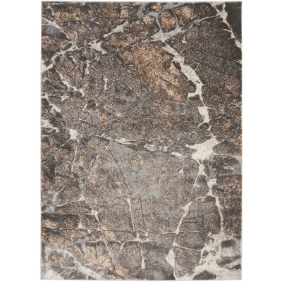 Shirleen Gray Area Rug Rug Size: Rectangle 52 x 73