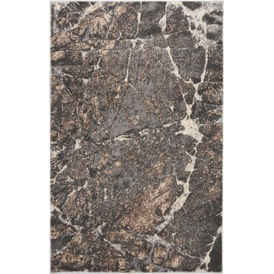 Shirleen Gray Area Rug Rug Size: Rectangle 311 x 511