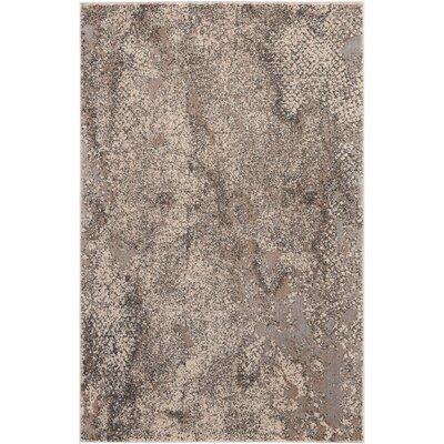Shirleen Gray Area Rug Rug Size: Rectangle 311 x 511