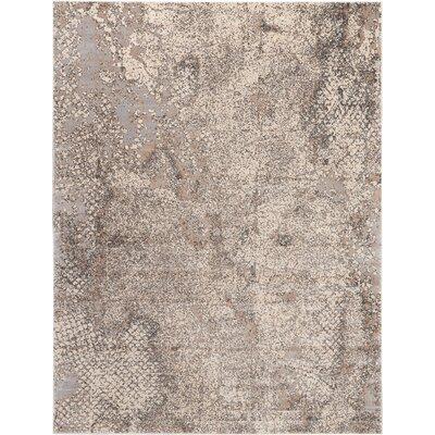 Shirleen Gray Area Rug Rug Size: Rectangle 8 x 105