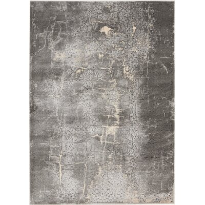 Shirleen Charcoal Area Rug Rug Size: Rectangle 52 x 73