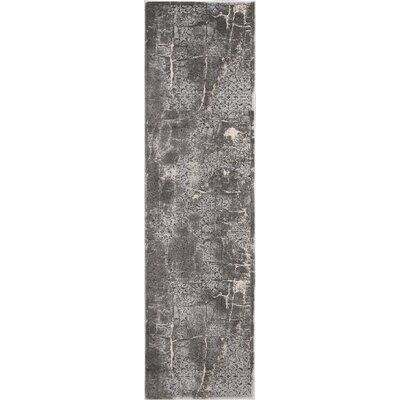 Shirleen Charcoal Area Rug Rug Size: Runner 22 x 76