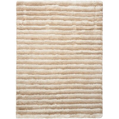 Chiana Hand-Tufted Paster Mink Shag Rug Rug Size: Rectangle 56 x 75
