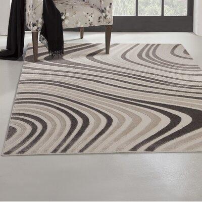 Bruges Charcoal/Ivory Area Rug Rug Size: 53 x 76
