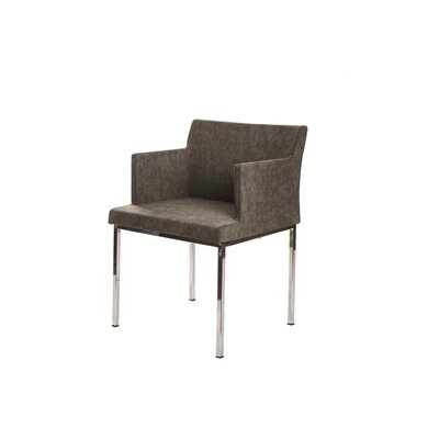 Lally Armchair Upholstery: Gray