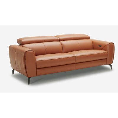 Nakale Motion Genuine Leather Reclining Sofa Upholstery: Caramel