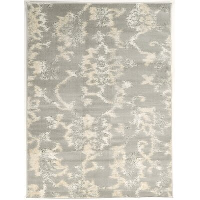 Delshire Gray Area Rug Rug Size: Rectangle 710 x 102