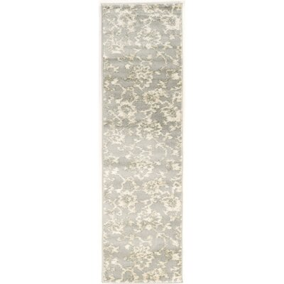 Delshire Gray Area Rug Rug Size: Runner 22 x 77