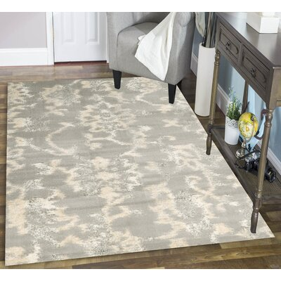 Delshire Gray Area Rug Rug Size: 53 x 73