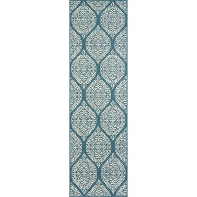 Ashleigh Baja Blue Indoor/Outdoor Area Rug Rug Size: Runner 23 x 76