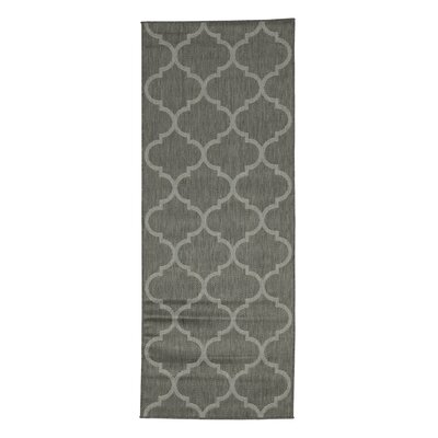 Emma Trellis Power Loom Dark Gray Indoor/Outdoor Area Rug Rug Size: Runner 27 x 7