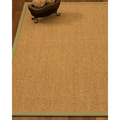 Healey Hand Woven Brown Area Rug Rug Size: Rectangle 12 x 15