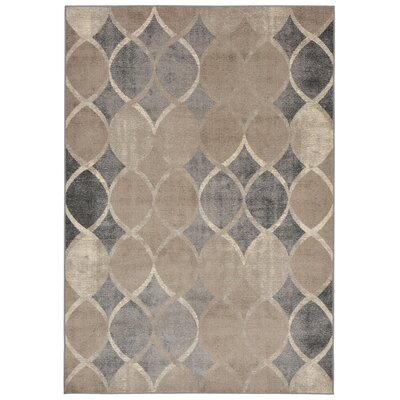 Colesberry Beige/Brown Area Rug Rug Size: 33 x 411