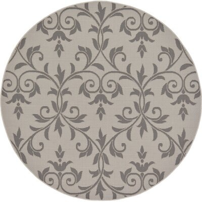 Boughton Monique Gray Outdoor Area Rug Rug Size: Round 6