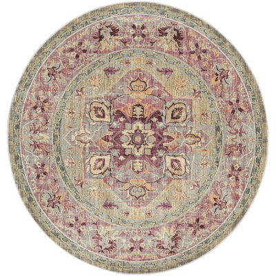 Norwood Grape/Blue Area Rug Rug Size: Round 67