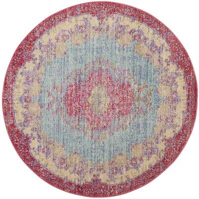 Bangou Light Blue/Fuchsia Area Rug Rug Size: Round 6