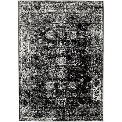Brandt Black/White Area Rug Rug Size: Rectangle 4 x 6