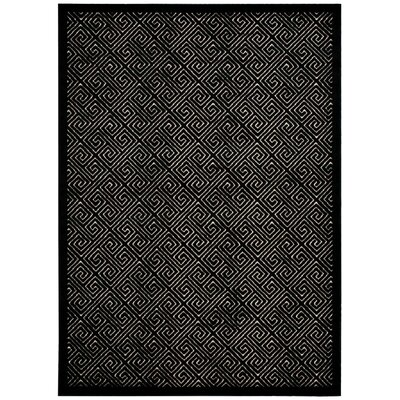 Blondelle Black Area Rug Rug Size: Rectangle 53 x 73
