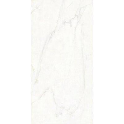 Festiva 12 x 24 Porcelain Field Tile in Glossy White