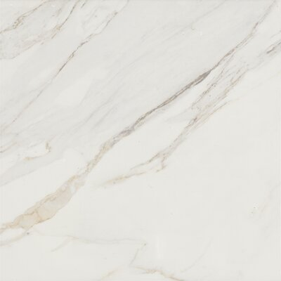 Baldocer 24 x 24 Porcelain Field Tile in Glossy White