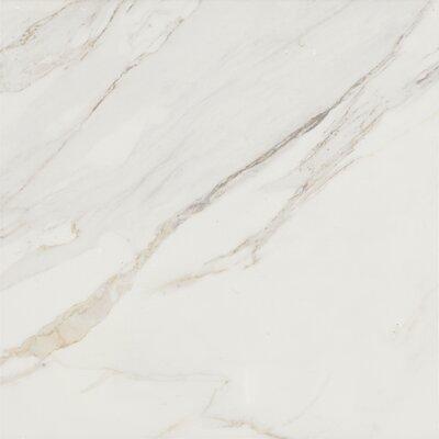 """Baldocer 24"""" X 24"""" Porcelain Field Tile In Glossy White"""