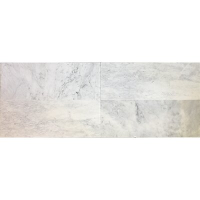 12 x 12 Carrara Marble Bullnose Field Tile in White/Gray (Set of 3)