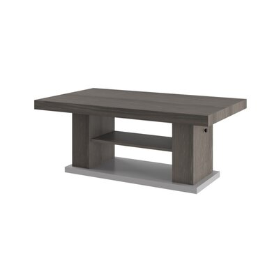 Sasha Lift Top Coffee Table Color: Oak
