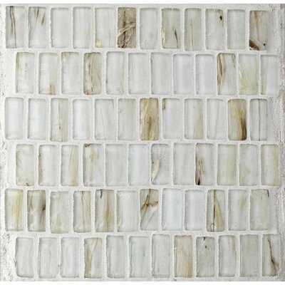 Seashell 1 x 2 Glass Mosaic Tile in White