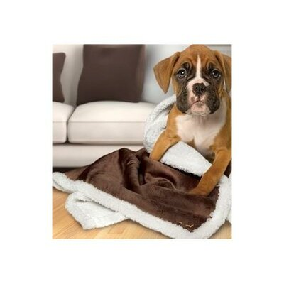 Axel Sherpa Reversible Microplush Pet Blanket/Throw Color: Chocolate