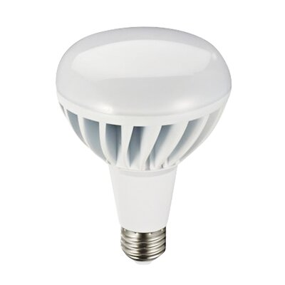 Frosted E26/Medium LED Light Bulb Wattage: 12W