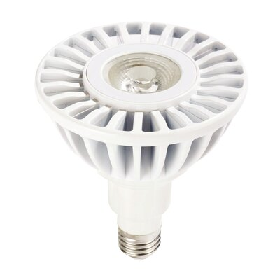 12W 120-Volt (3000K) LED Light Bulb