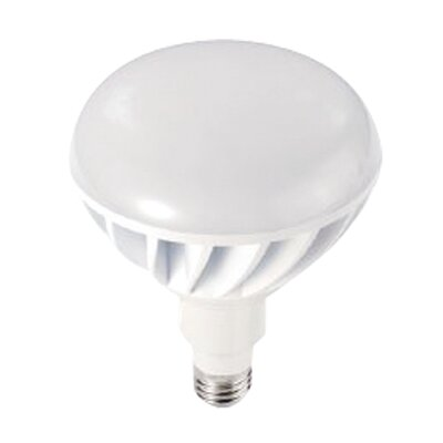 12W 120-Volt (2700K) LED Light Bulb
