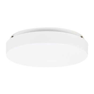 Haylee 1-Light Flush Mount