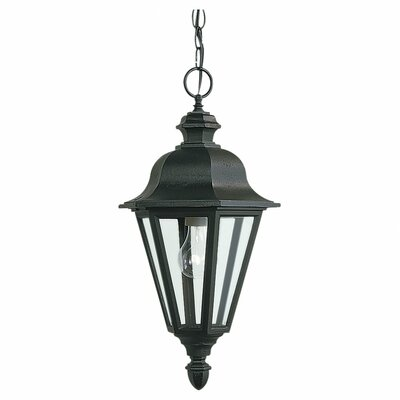 Classic 1-Light Outdoor Hanging Lantern Finish: Black