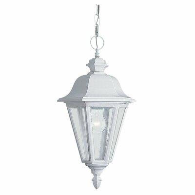 Classic 1-Light Outdoor Hanging Lantern Finish: White