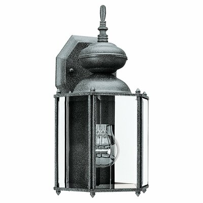 Classic 1-Light Outdoor Wall Lantern Finish: Black