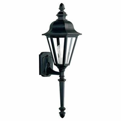 Classic 1-Light Outdoor Sconce Finish: Black