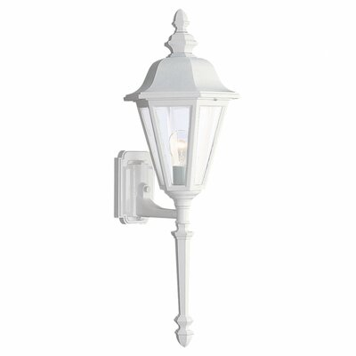 Classic 1-Light Outdoor Sconce Finish: White